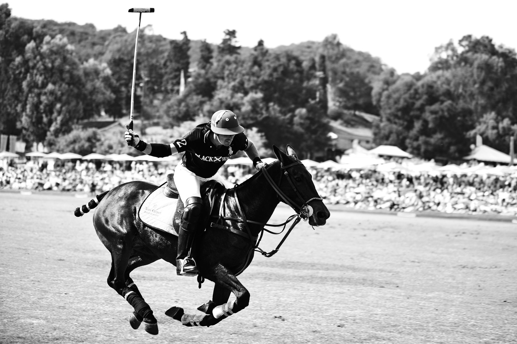 Christies_Polo_CBPHOTO_1656_BW-DUP.jpg